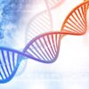 ATTACCHI HACKER E SEQUENZE DI DNA