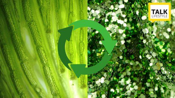 moda e lusso sostenibile