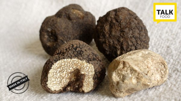 Truffle Market