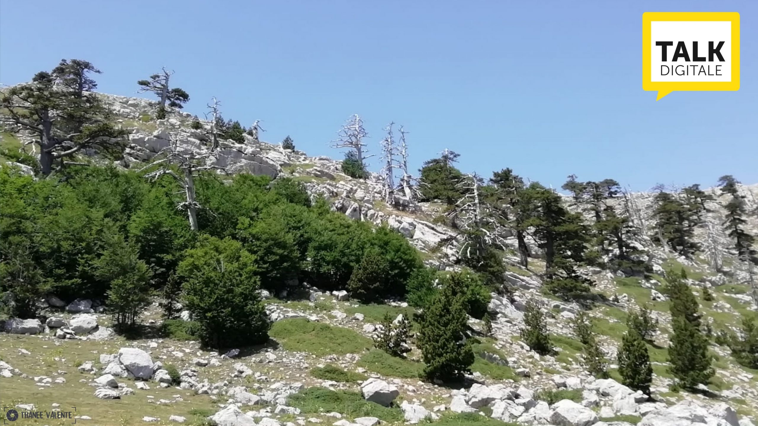 destinazione basilicata (2)